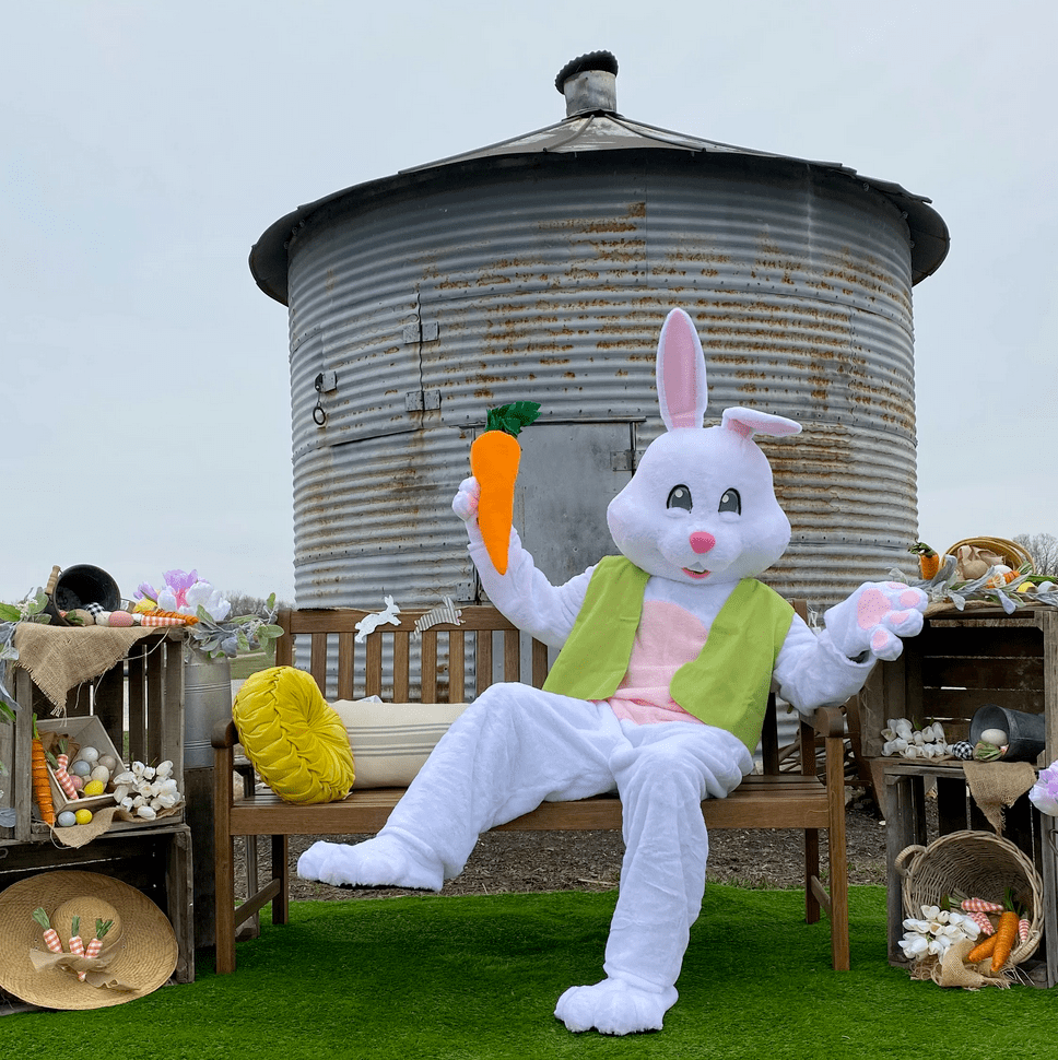 Pictures with teh Easter Bunny