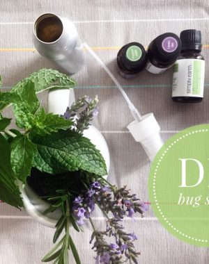 DIY all natural bug spray: easy, affordable, and it works! | ohlovelyday.com