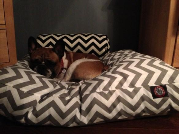 I like big beds and cannot lie...