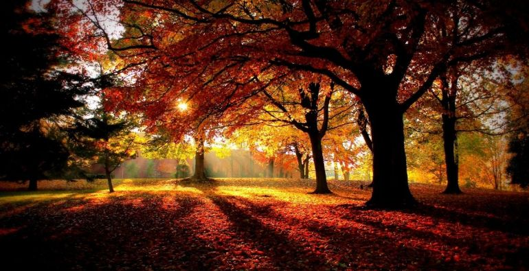 Mabon is represented by the time of day of sunset.