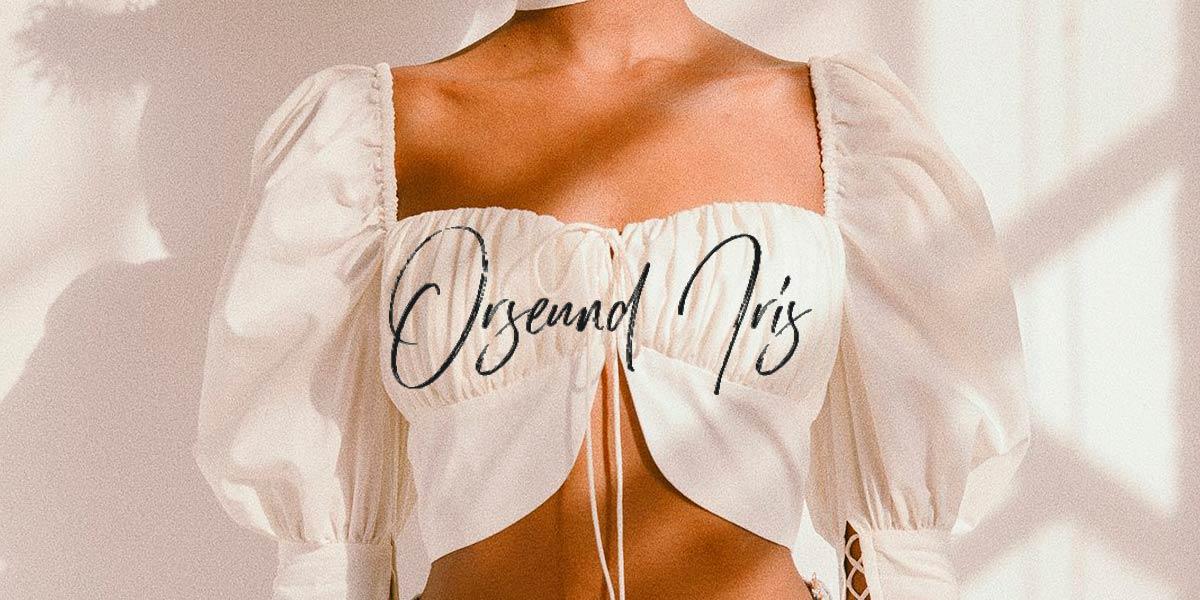Blusa retrô da marca Orseund Iris, de Nova York, com mangas bufantes.