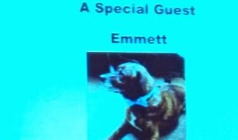 PetSafe gala to fight canine cancer