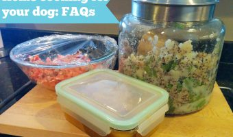 Homecooking for your dog FAQs
