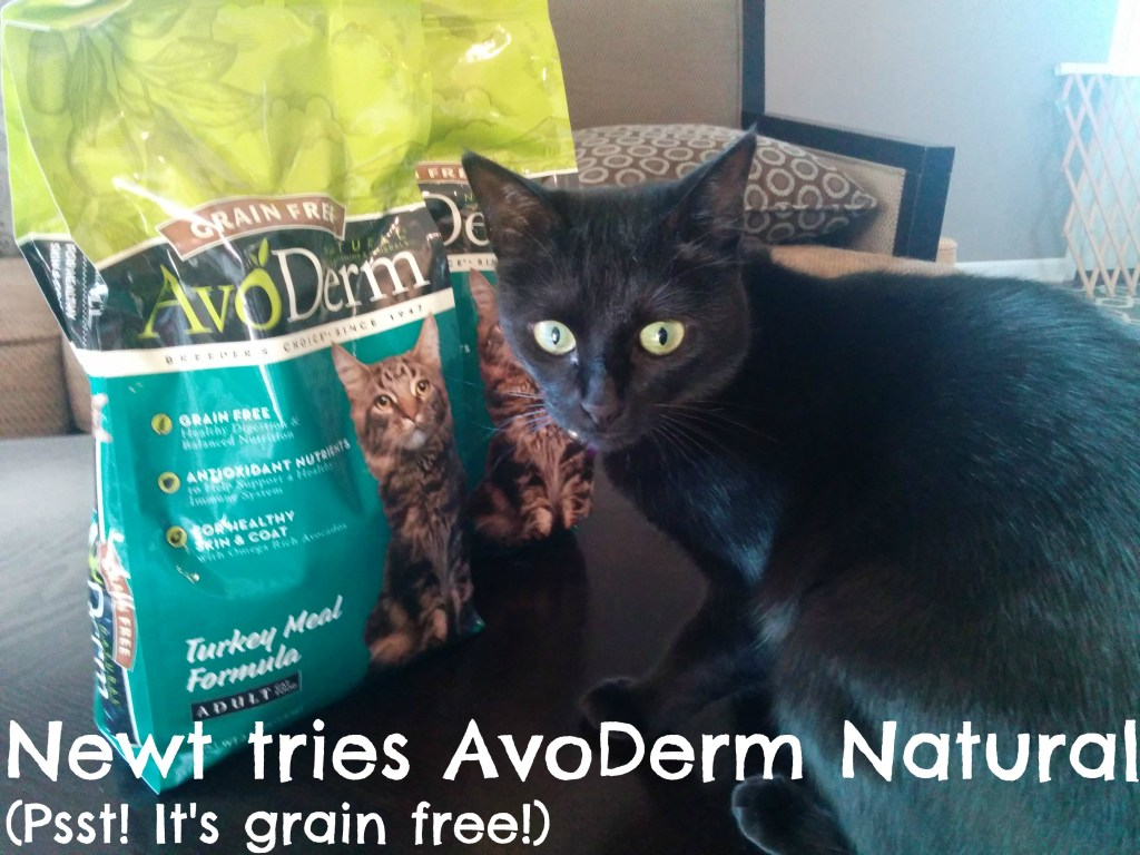 Newt tries AvoDerm Natural