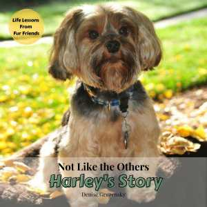 The cover of Harley's Story features a close up of a Yorkshire Terrier.
