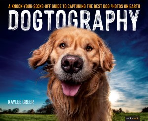 The cover of Dogtography shows a golden dog smiling into the camera against a bright blue sky