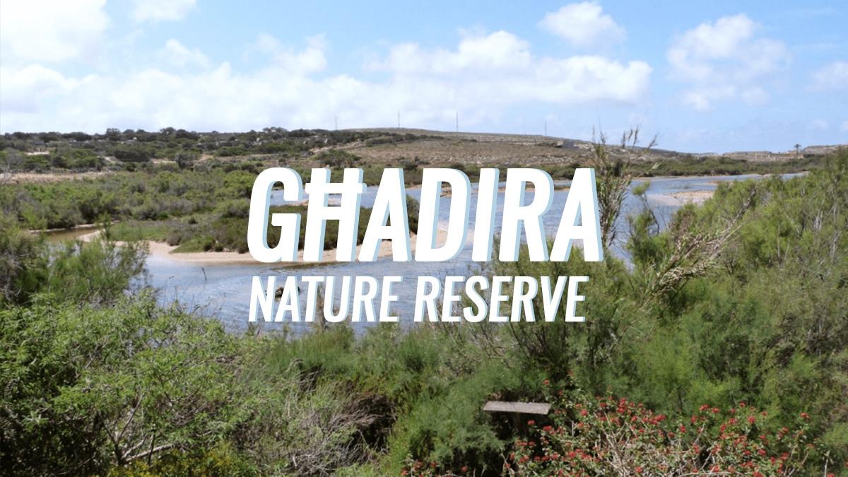 Nature Reserve Series: Għadira
