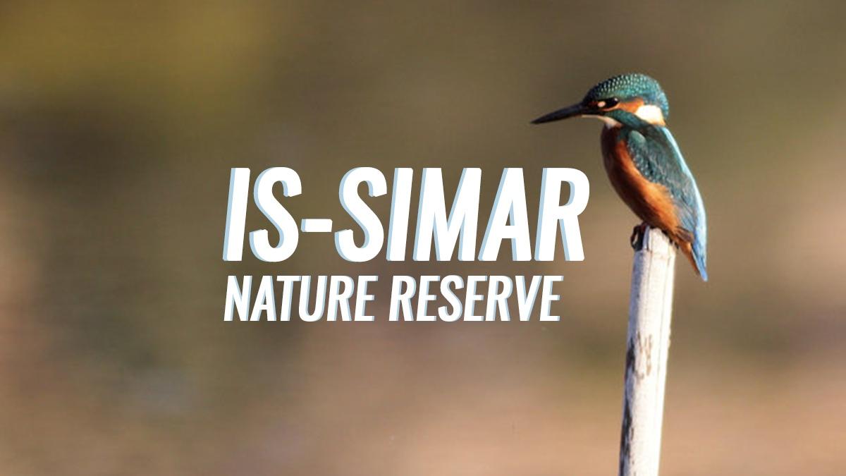Nature Reserve Series: Is-Simar