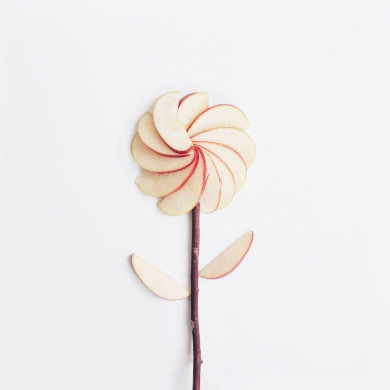 3 Day Apple Mono Diet