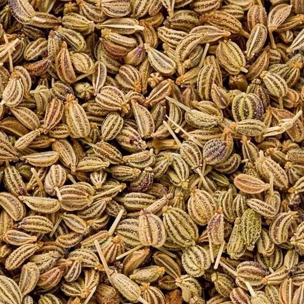 A pile of carom seeds / ajwain