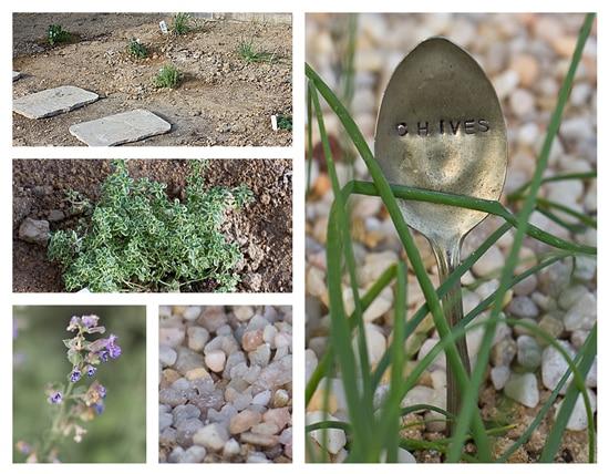 Nunca agregue arcilla a la arena o arena a la arcilla | Pat Welsh Orgánica y el Sur de California Jardinería