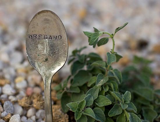 Cómo cultivar verduras incluso en arcilla dura