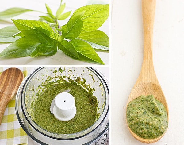 Magimix Review + Thai Basil Pesto Recipe