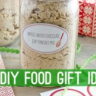 Whole Wheat Chocolate Chip Pancake Mix Recipe + 99 More DIY Food Gifts for the Holidays