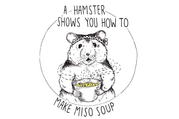 A Hamster Shows You How to Make Miso Soup