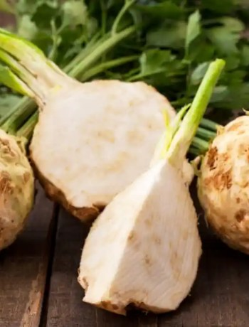 Ingredient Spotlight: Celery Root