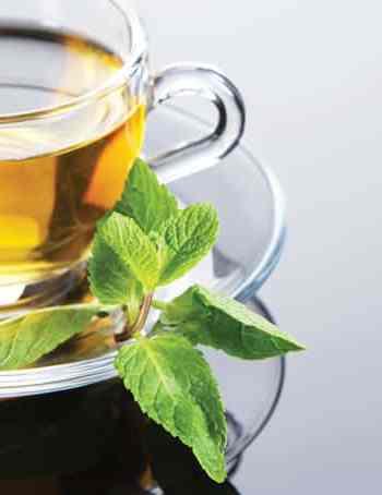 Green Tea & Apple Cider Vinegar Tonic