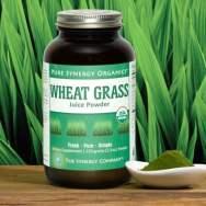 wheat grass juice powder the synergy company