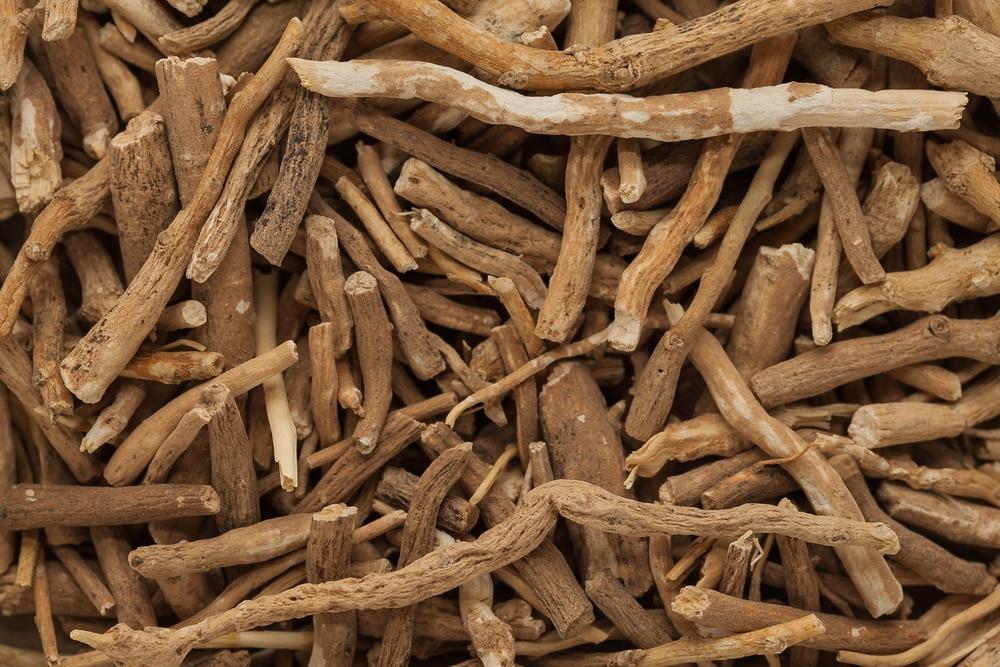 Organic Ashwagandha (Withania somnifera) roots. Macro close up background texture. Top view.