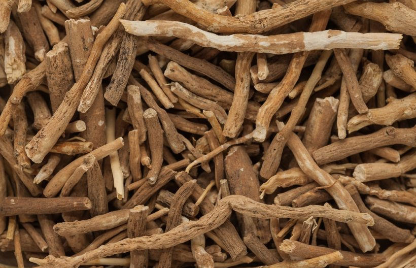 Organic Ashwagandha (Withania somnifera) roots. Macro close up background texture. Top view.