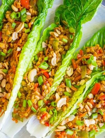 Sesame Ginger Tempeh Lettuce Wraps