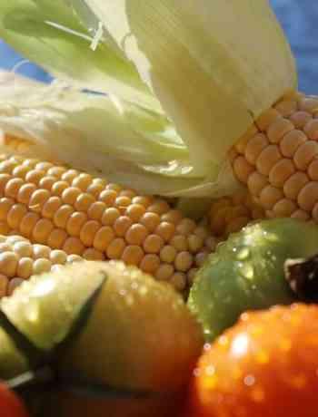 can you eat raw corn