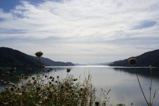 Weiter gehts Richtung Osten: der Queen Charlotte Drive von Nelson nach Picton bietet atemberaubende Blicke auf ruhige Fjorde.