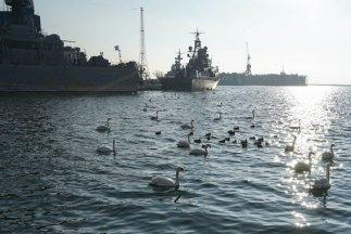 base naval kaliningrado