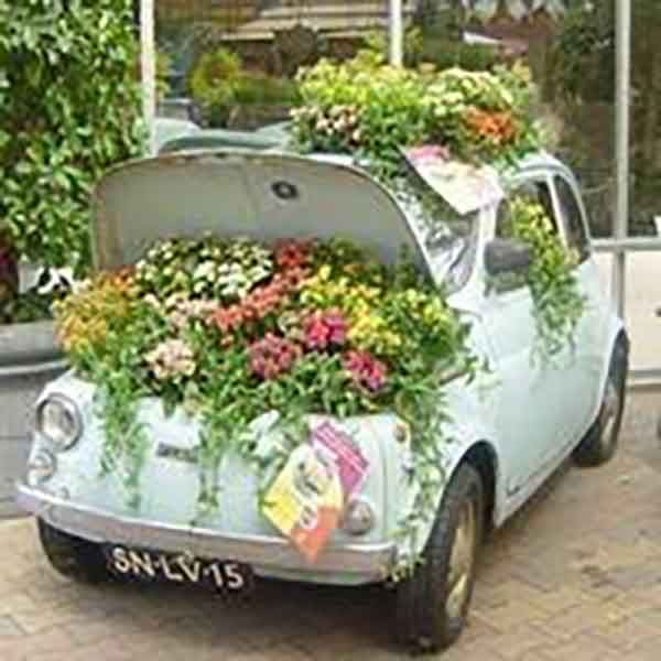 Old Car Planter