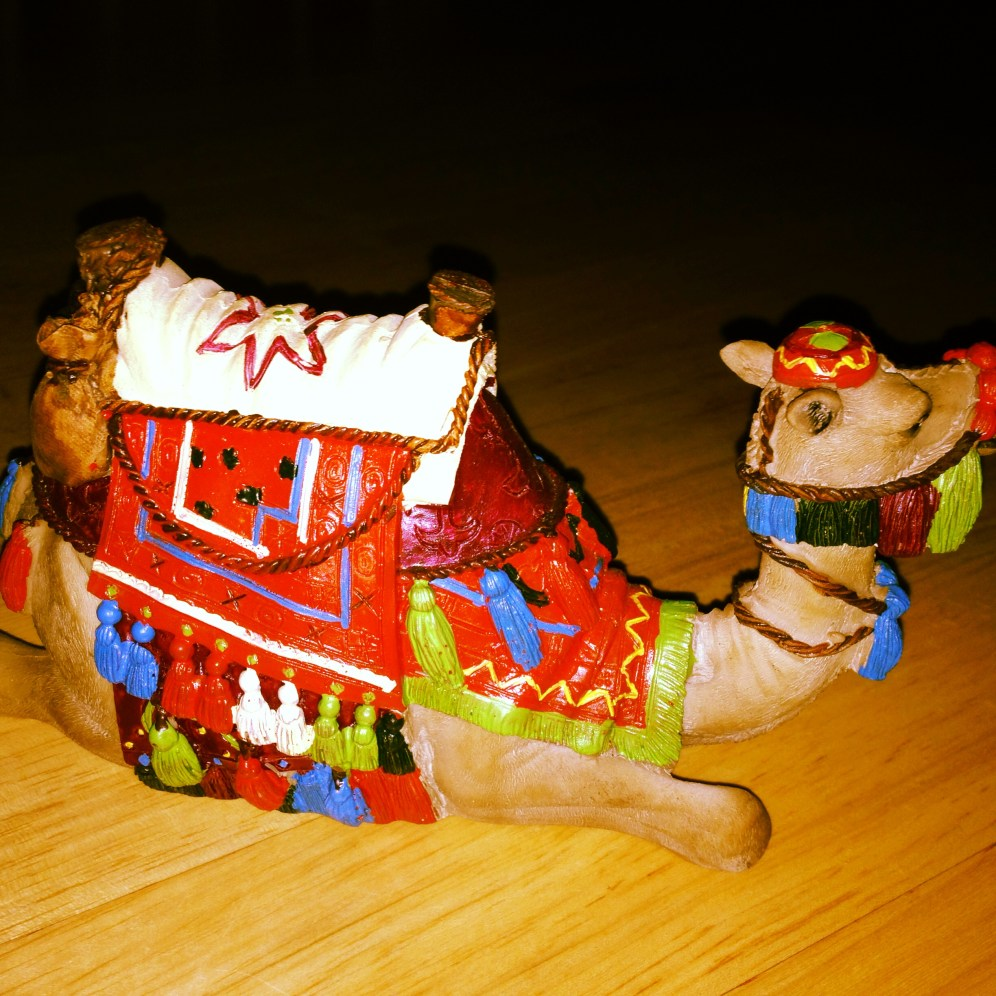 My camel souvenir :)