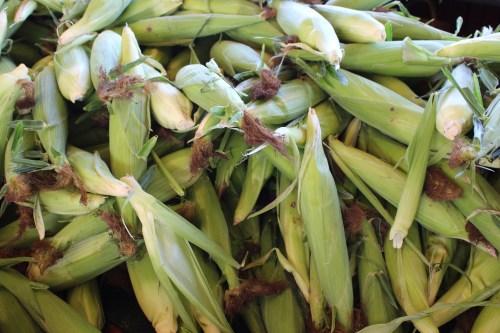 Truckload of corn -- Decatur AL