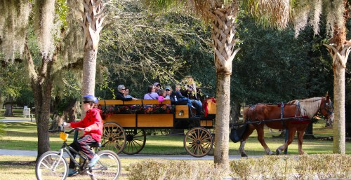 Horse-drawn carriage, Jekyll Island