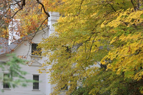 Yellow leaves contrast with a classic white house on the grounds of The Homestead