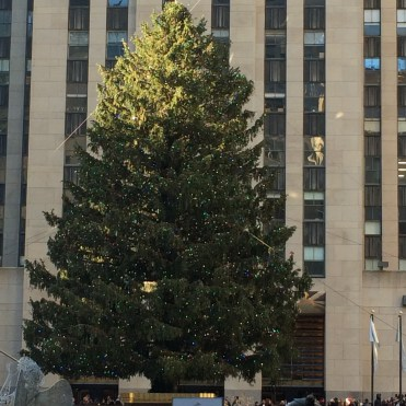 Rockefeller Center Tree 2015