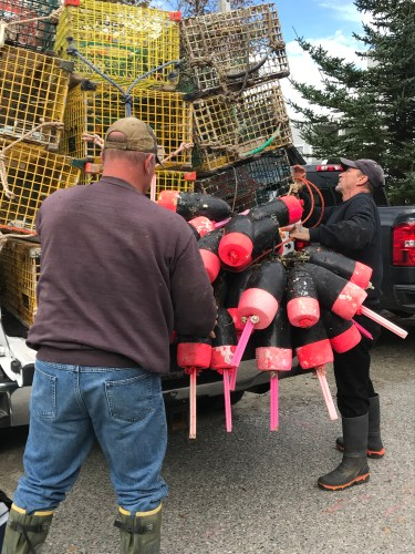 Pile 'em high: buoys and traps ready to head for home