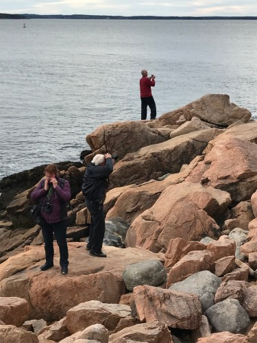 Perched on flat rocks, tourists try to capture Bass Harbor Light without falling!