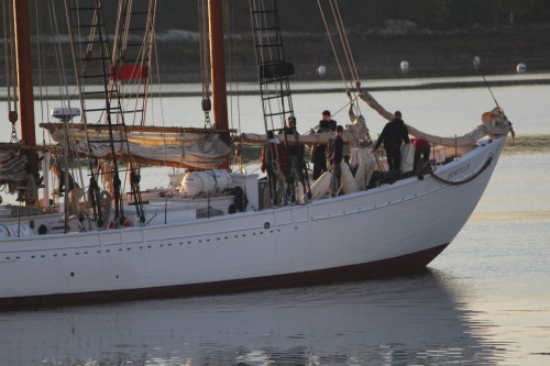 Cadets learning to sail aboard Bowdoin