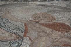 Colorful mosaics remain at Volubilis