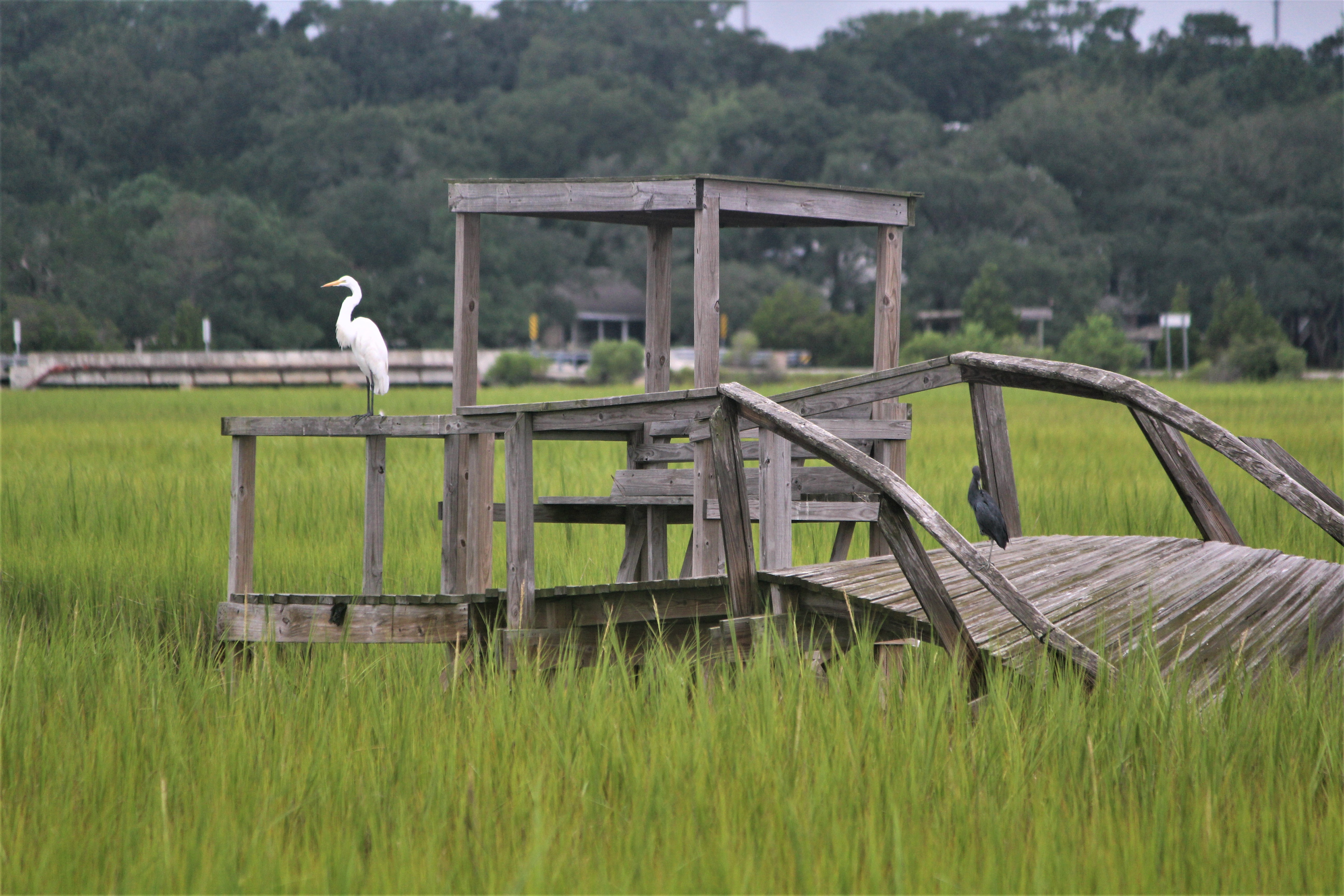 Crab dock at Pawleys Island, SC