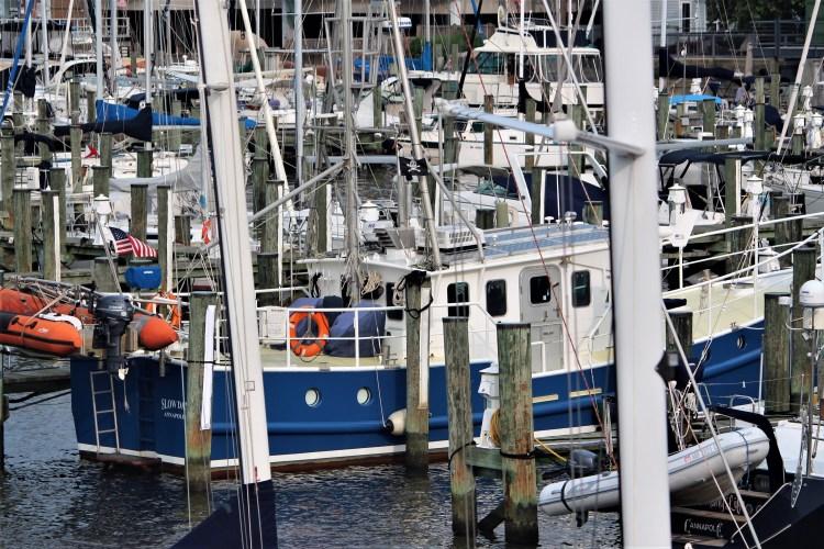 Boats and masts, Annapolis Harbor