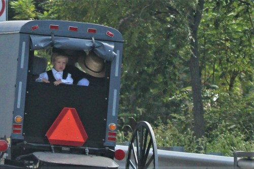 Amish Children in buggy, Intercourse, PA