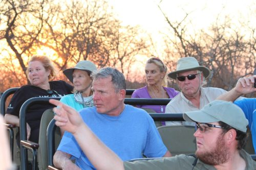 Thornybush Game Reserve, S. Africa - hunting for prey