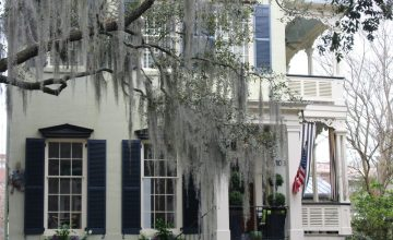 Savannah GA: white house, Spanish moss on Jones Street