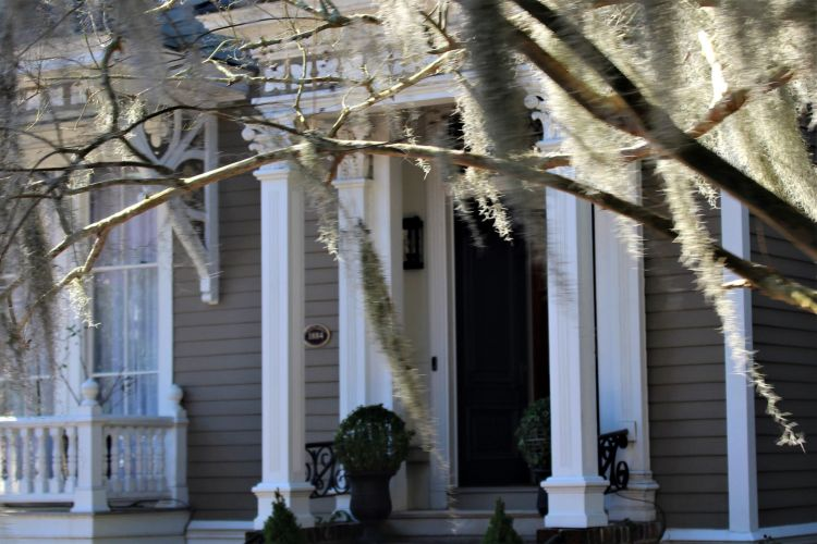 Savannah home with Spanish moss in front