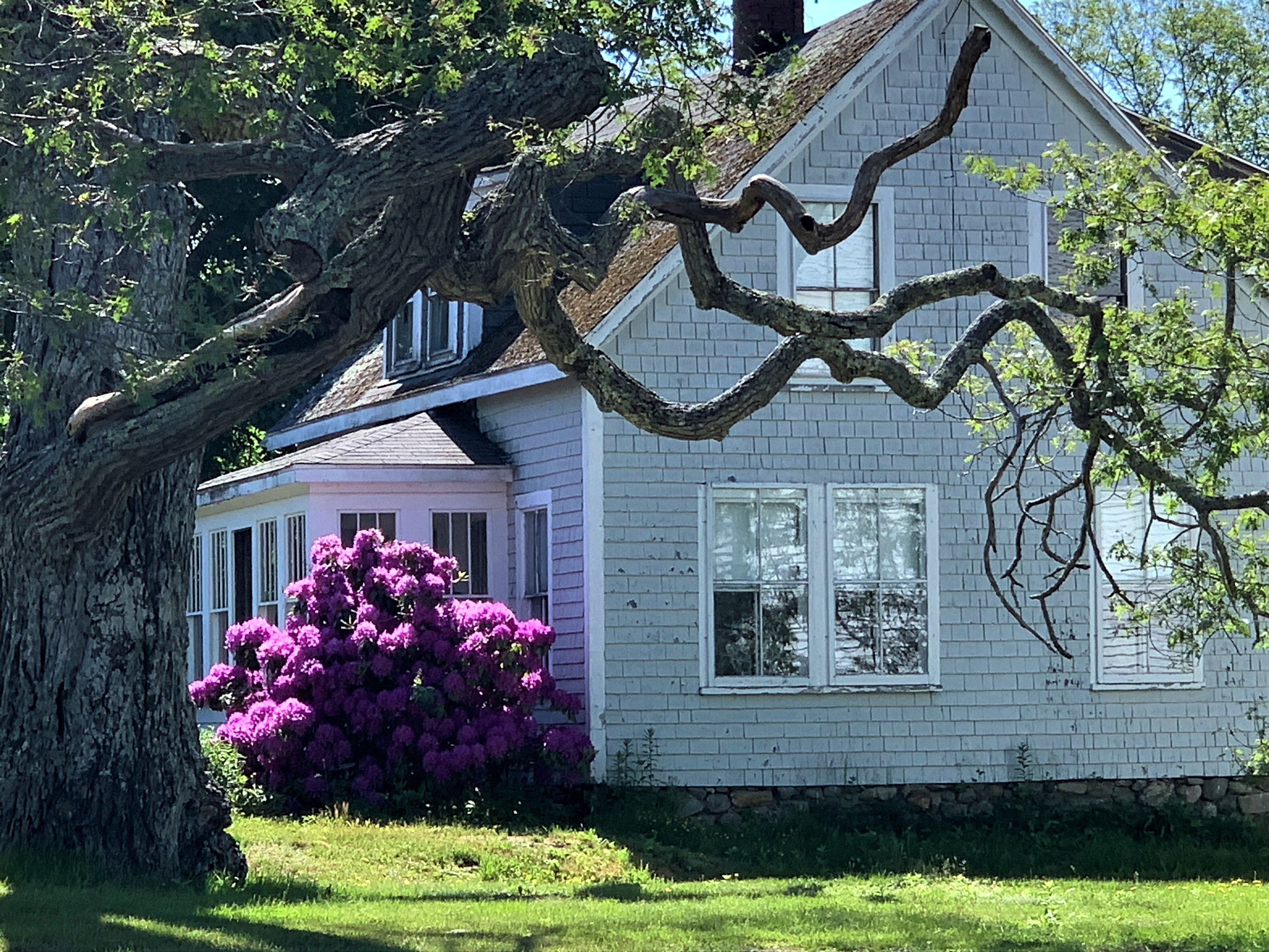 House in New Harbor, Maine