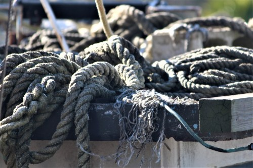Rope at sundown: Apalachicola FL