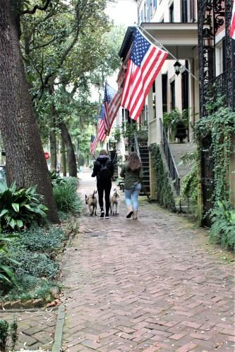 Early morning stroll through Savannah's residential area