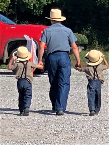 Amish big brother and two little brothers, Crab Orchard, KY