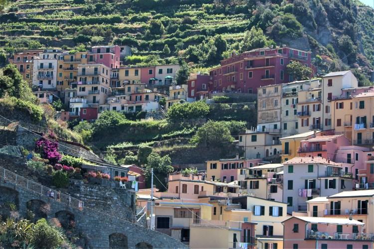 Terraced gardens and homes of Manarola, Cinque Terre, Italy