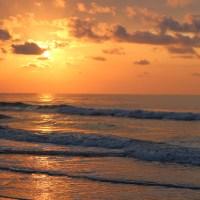 Morning beach walk: Pawleys Island, South Carolina